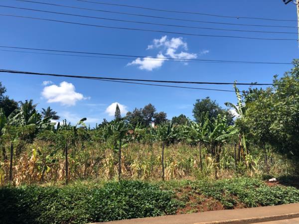 0.5 acres residential vacant land for sale in Runda  (Kenya)