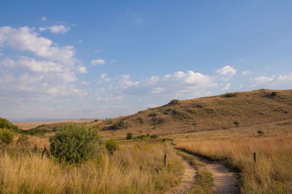 9 hectare mixed use farm for sale in Kalkheuwel