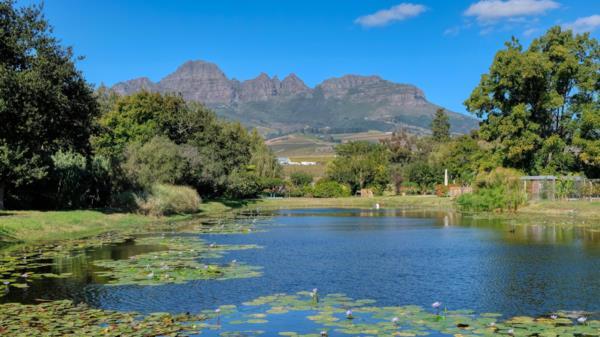 3.64 hectare wine farm for sale in Stellenbosch Farms