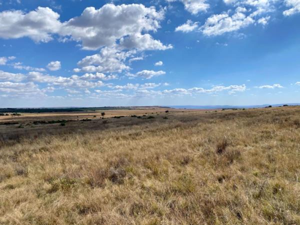 2242.51 hectare game farm for sale in Dullstroom
