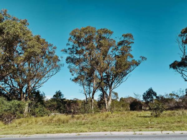 31074 m² residential vacant land for sale in Parsons Vlei