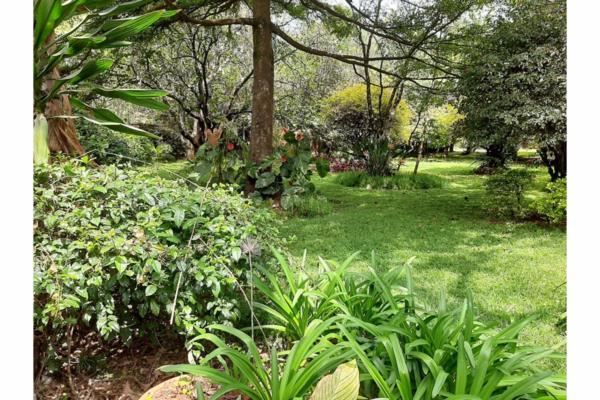 0.9 acres vacant land for sale in Lavington (Kenya)
