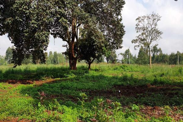 8.9 acres vacant land for sale in Muthaiga North (Kenya)