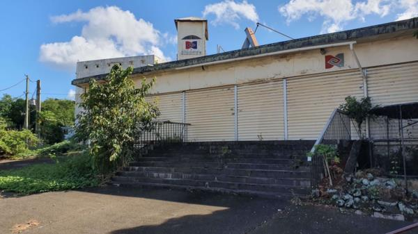 13257 m² commercial industrial property for sale in Riche Terres (Mauritius)