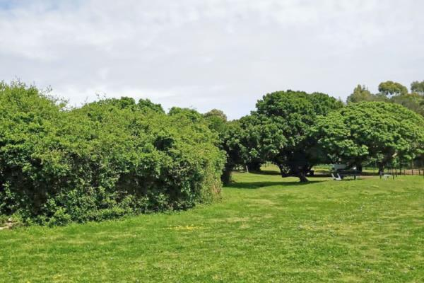 1.9 hectare vacant land for sale in Lovemore Park