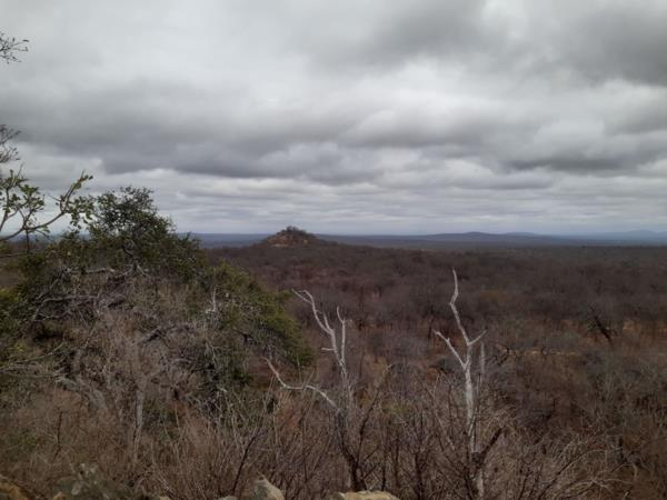 1421.32 hectare game farm for sale in Tzaneen Rural